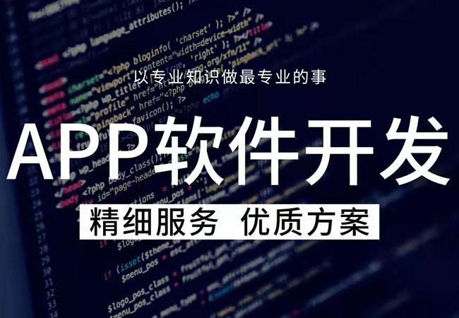 app定制开发不如小程序开发?